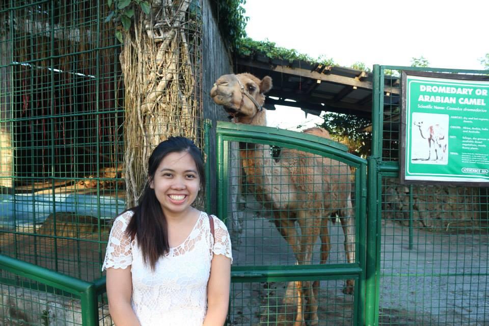 camel in residence inn tagaytay
